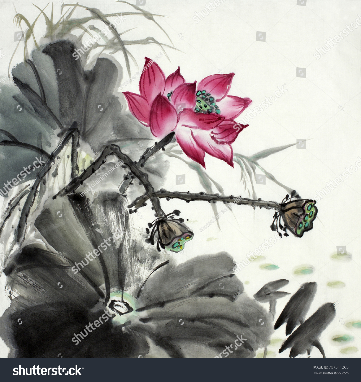 Lotus flower painted chinese style ink stock illustration 707511265 lotus flower painted in chinese style ink izmirmasajfo