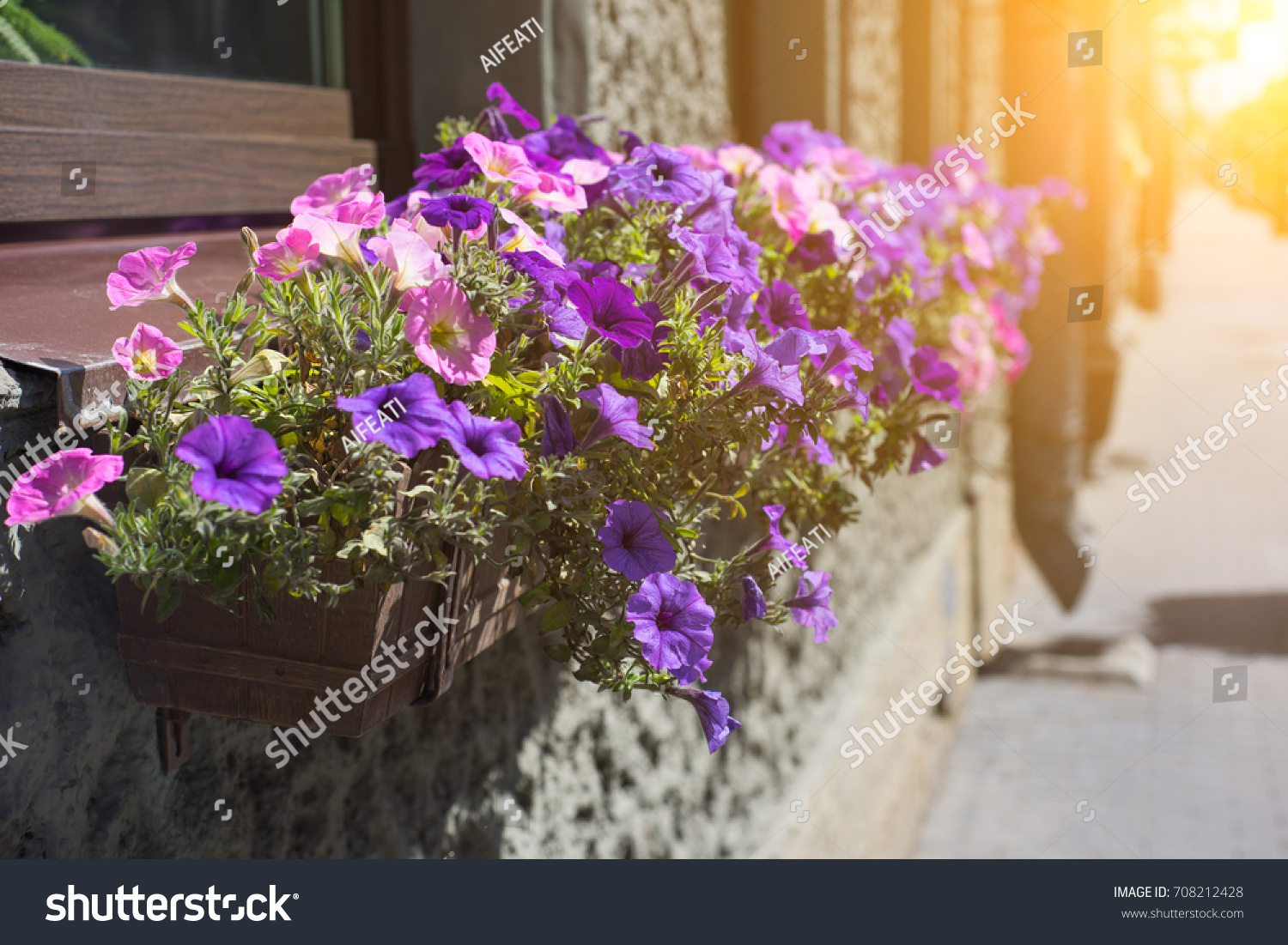 Flower Pot With Pink Flowers Hang On The Street Ez Canvas