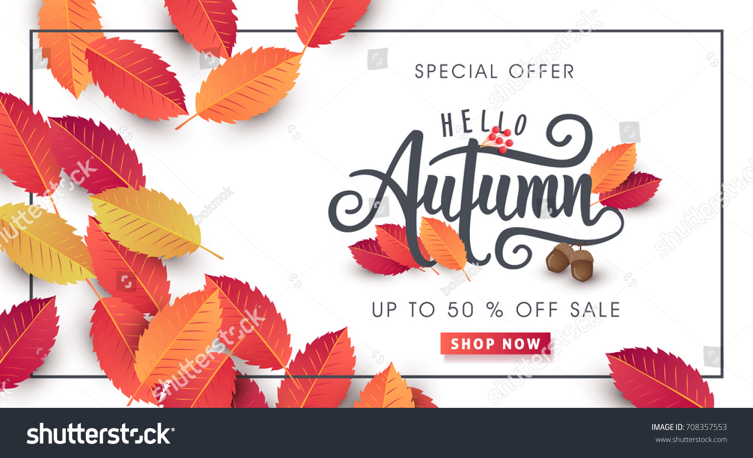 Autumn calligraphy. Seasonal lettering.web banner template.vector illustration #708357553