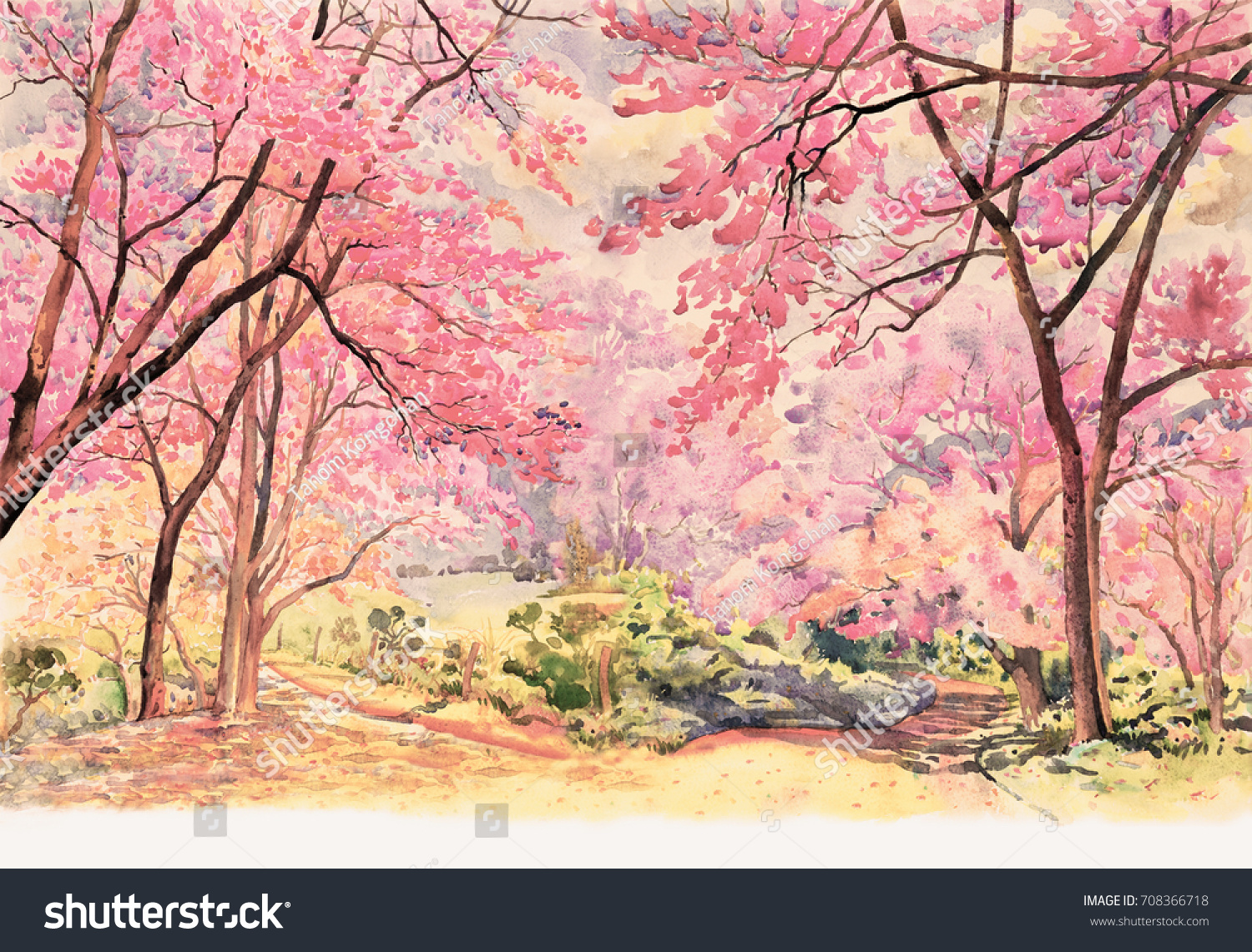 Painting Watercolor Landscape Pink Red Flower Stock Illustration