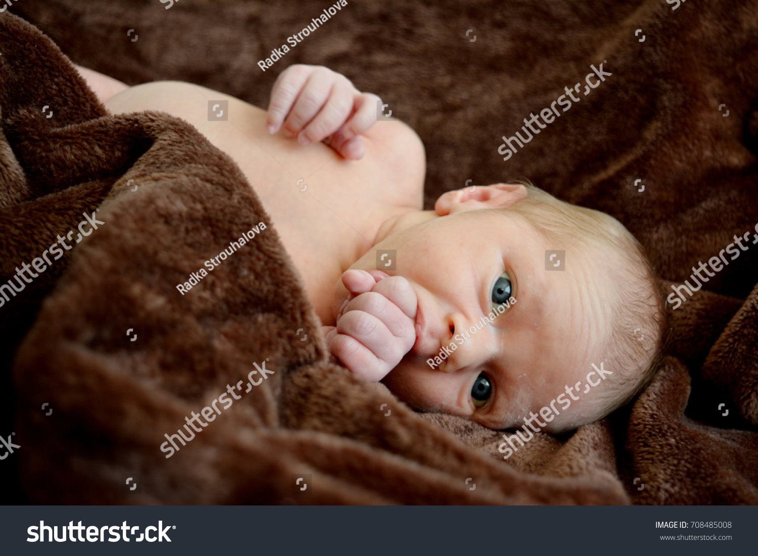 baby model boy background brown little stock photo (royalty free