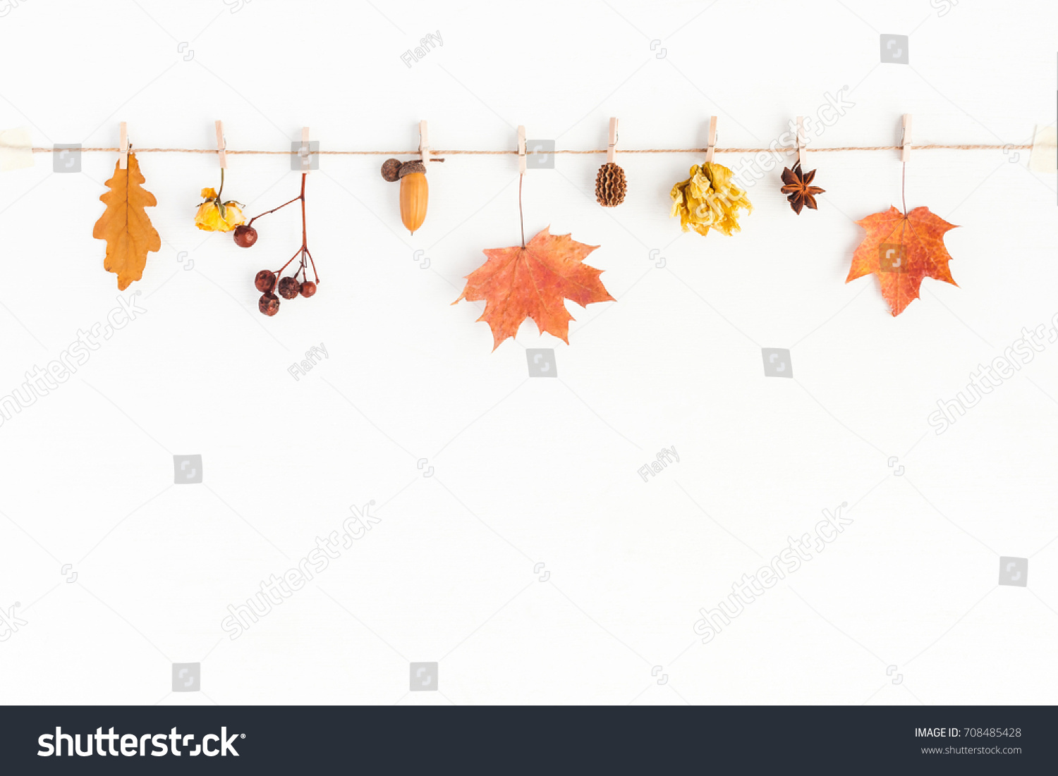 Autumn composition. Autumn flowers and leaves, acorn, pine cone, anise star. Flat lay, top view, copy space #708485428