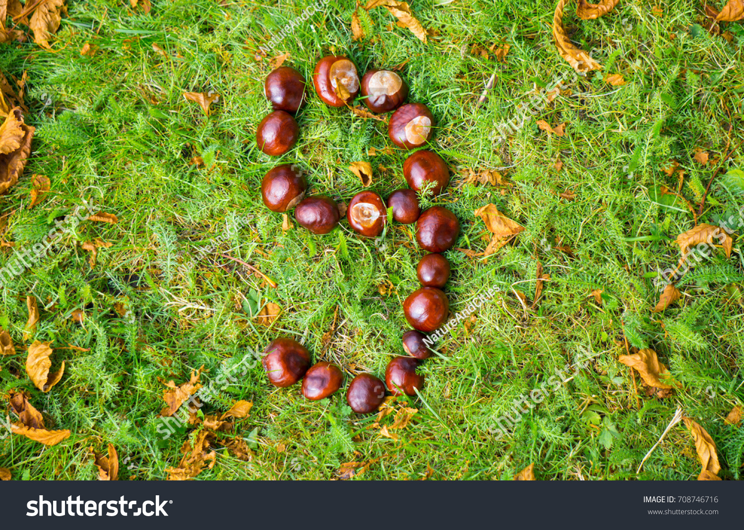 Number 9 Made Conkers On Green Stock Photo (Edit Now) 708746716