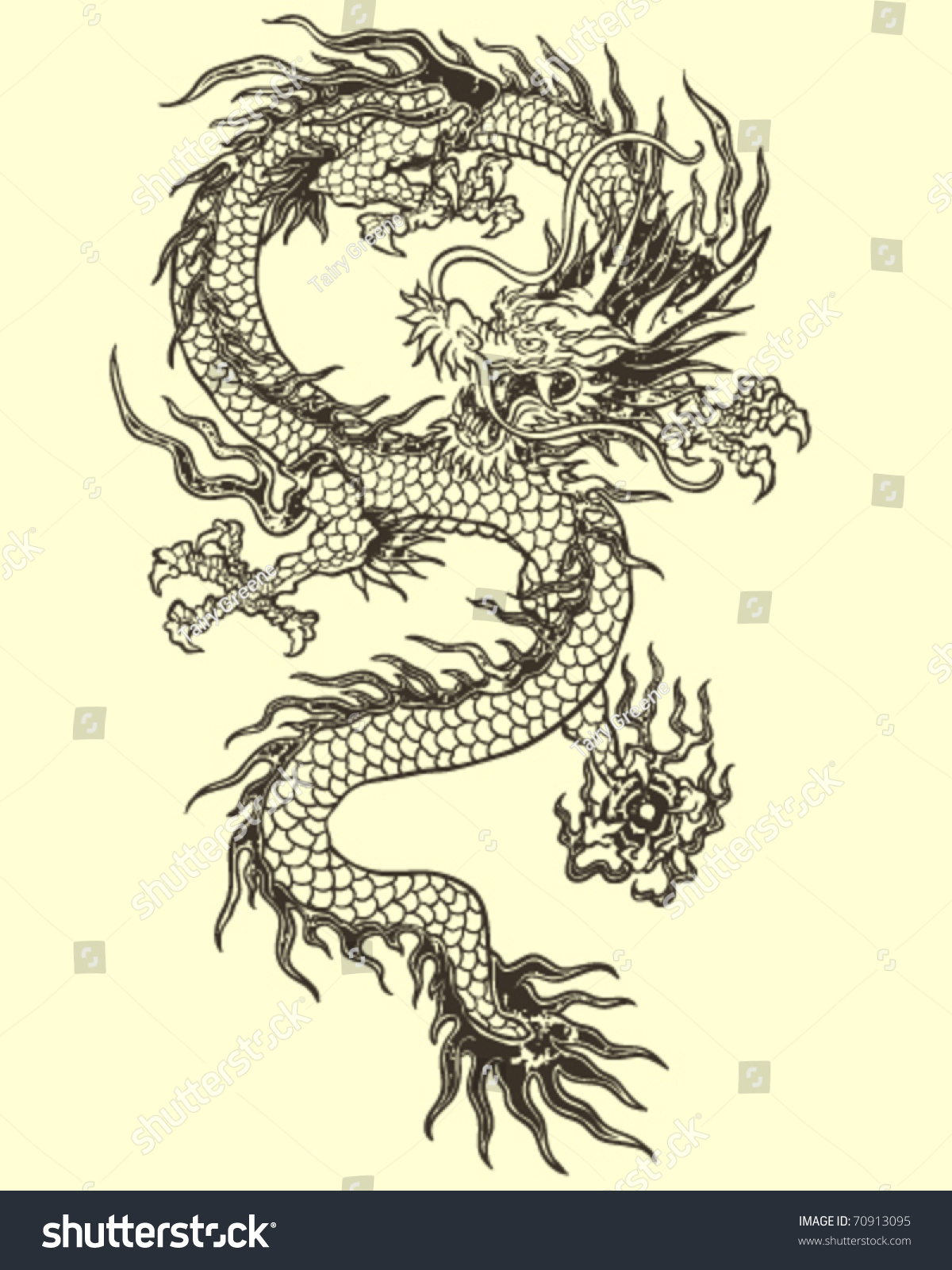 Illustration Tattoos: Dragon Tattoo Illustration Stock Vector 70913095