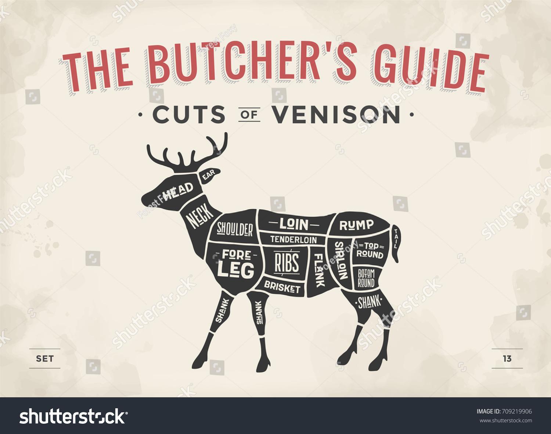 Caribou Meat Cut Diagram Application Wiring Chickencutsdiagram Set Poster Butcher Stock Vector Royalty Free Rh Shutterstock Com Beef Steak Cuts Of Pork