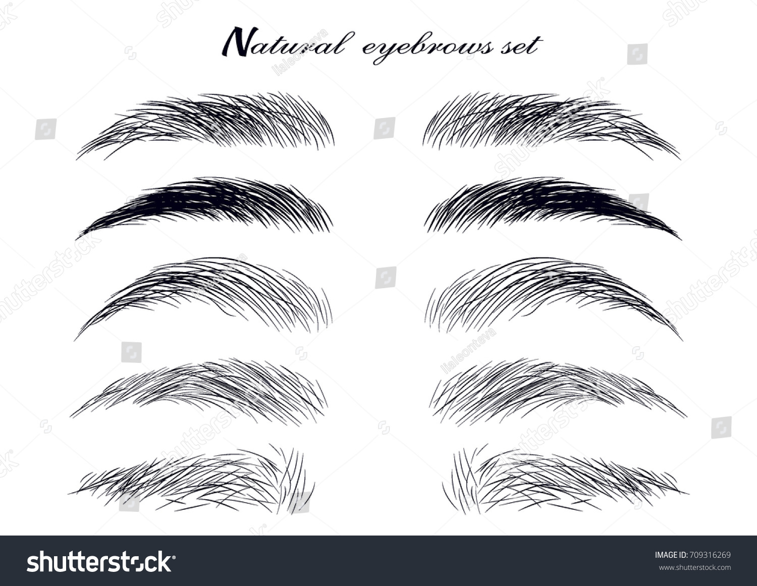 Natural Realistic Brow Sketch Set Forms Stock Vector Royalty Free