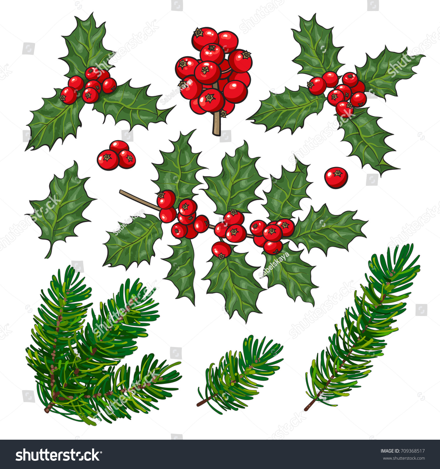 set of fir tree and mistletoe branches with leaves and berries christmas decoration elements