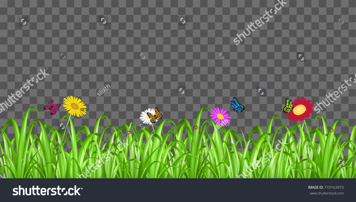 Grass Flower Butterfly On Transparent Background Stock Vector ...