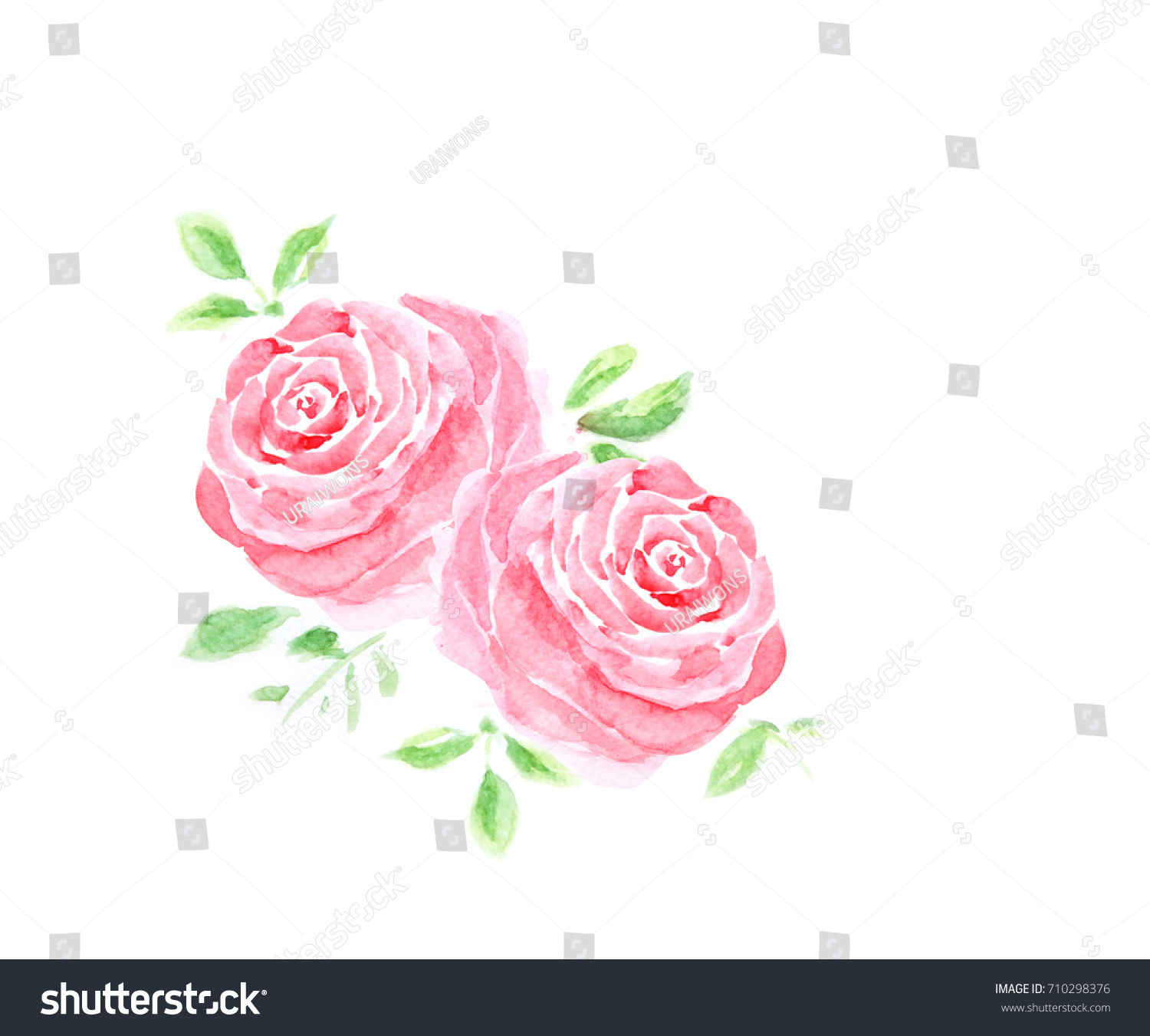 Pink Rose Corner Border In Watercolor Painting Design For Decorated