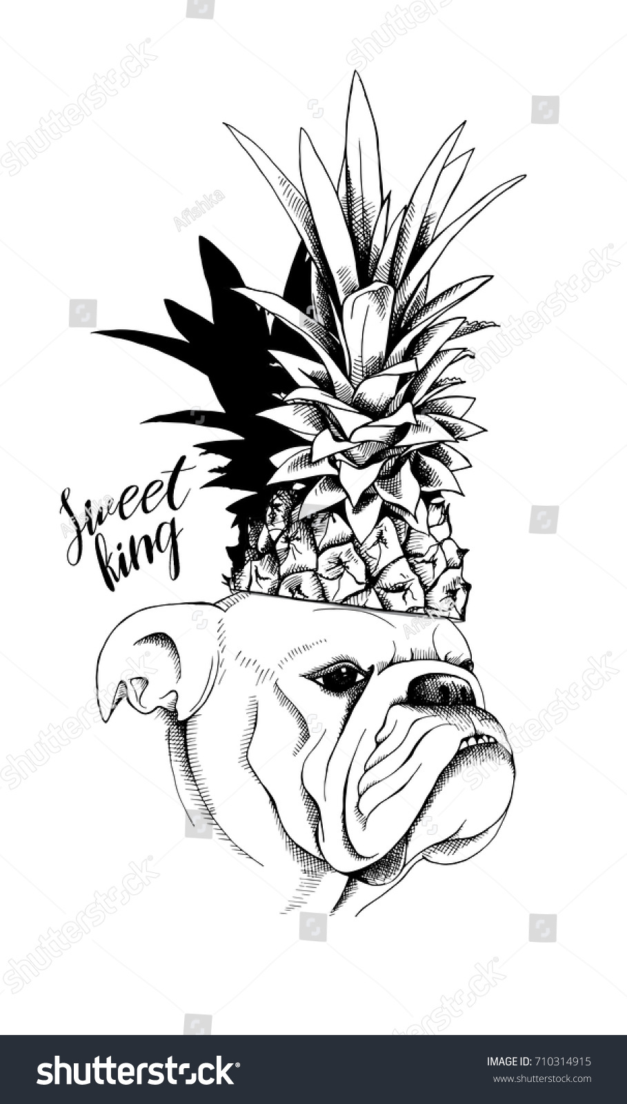 Bulldog Pineapple Crown Vector Black White Stock Vector 710314915 ... for Clipart Pineapple Black And White  61obs