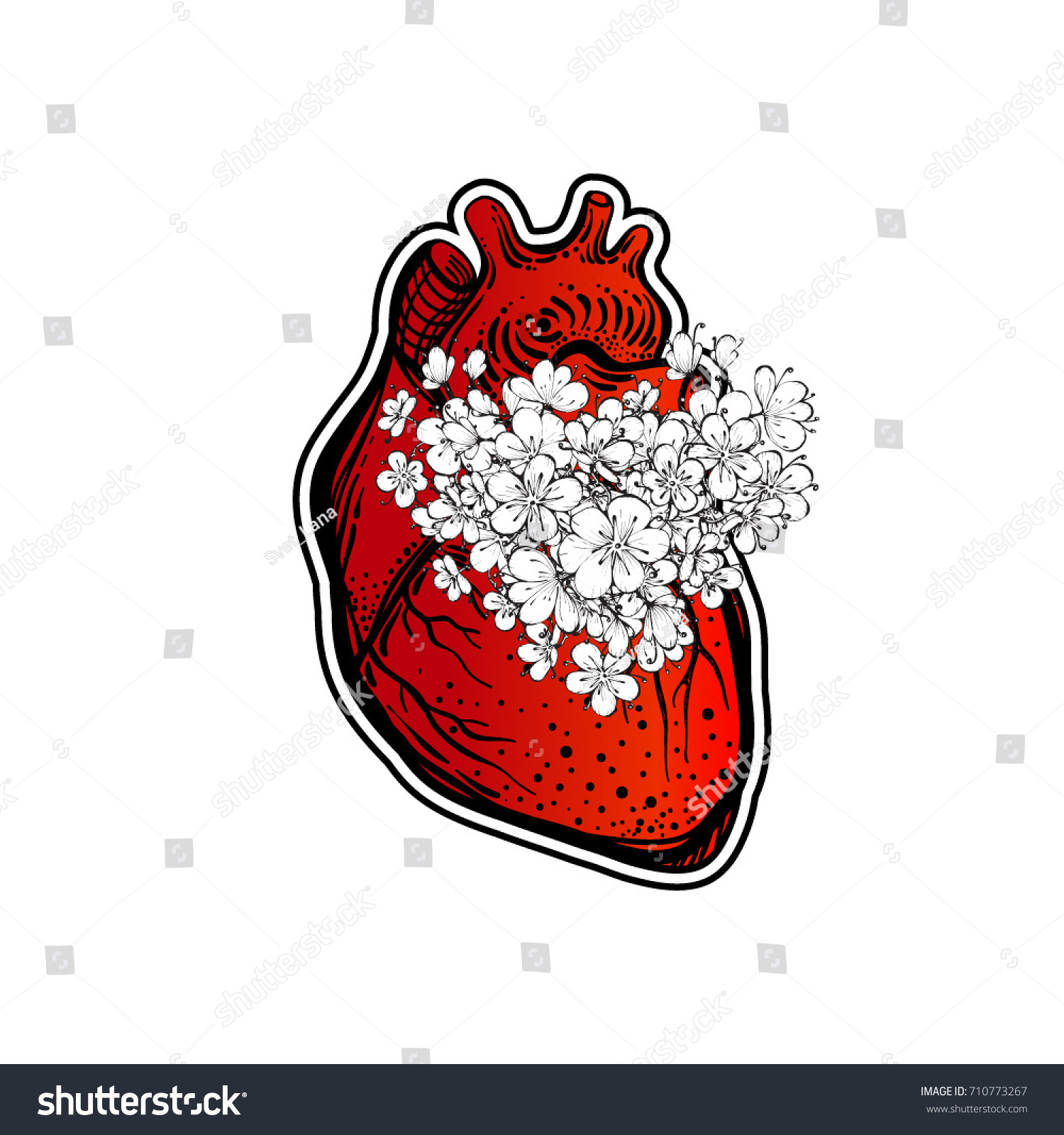 Human heart flowers human body symbol stock vector 710773267 the human body a symbol of the feelings the buycottarizona Gallery