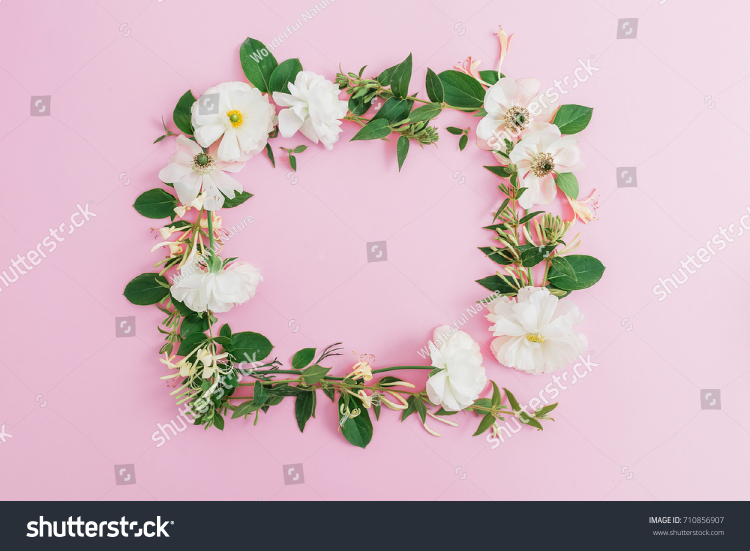 Floral Frame White Flowers On Pink Stock Photo Edit Now 710856907