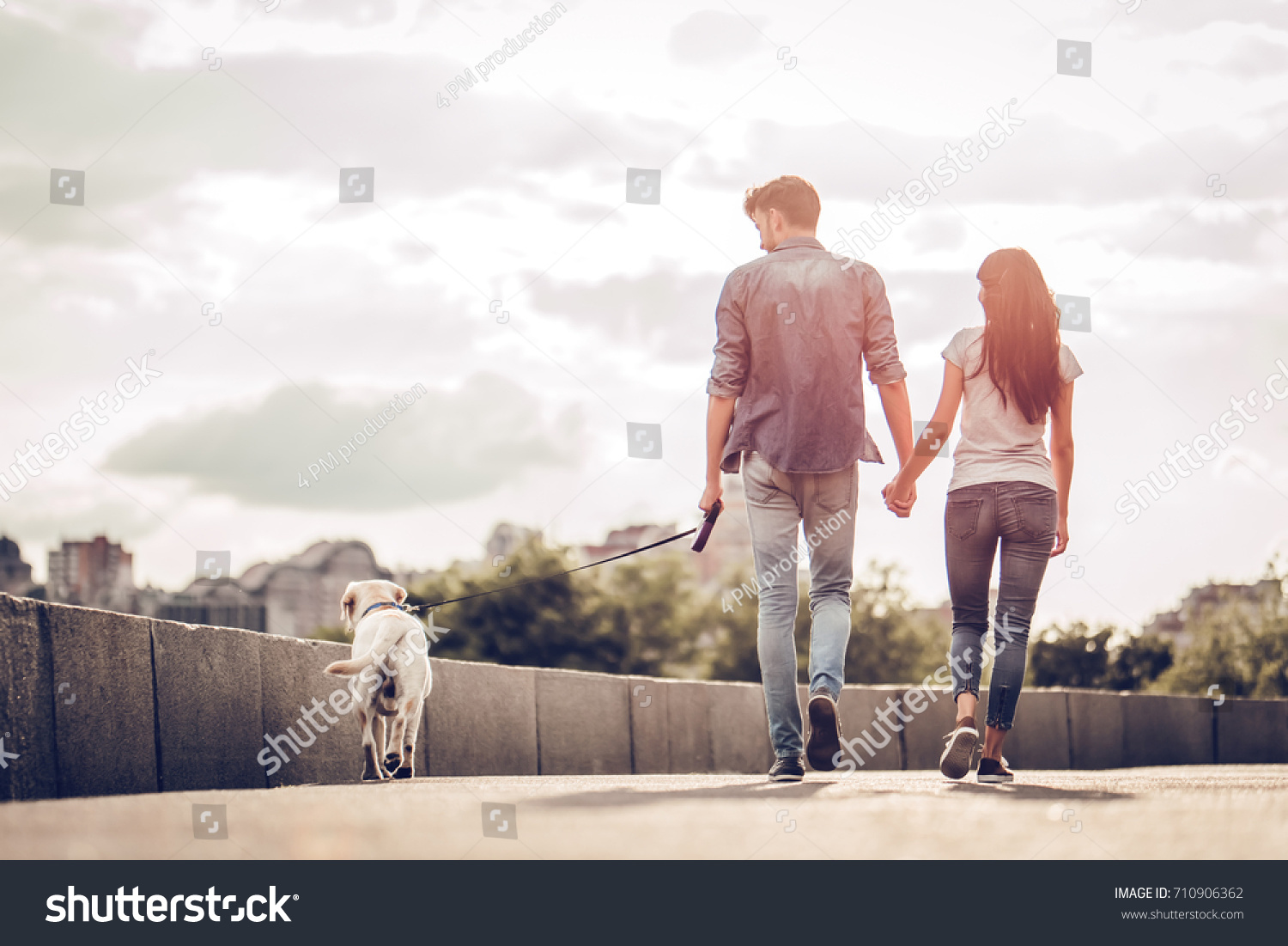 Romantic couple is on a walk in the city with their dog labrador. Beautiful young woman and handsome man are having fun outdoors with golden retriever labrador. #710906362