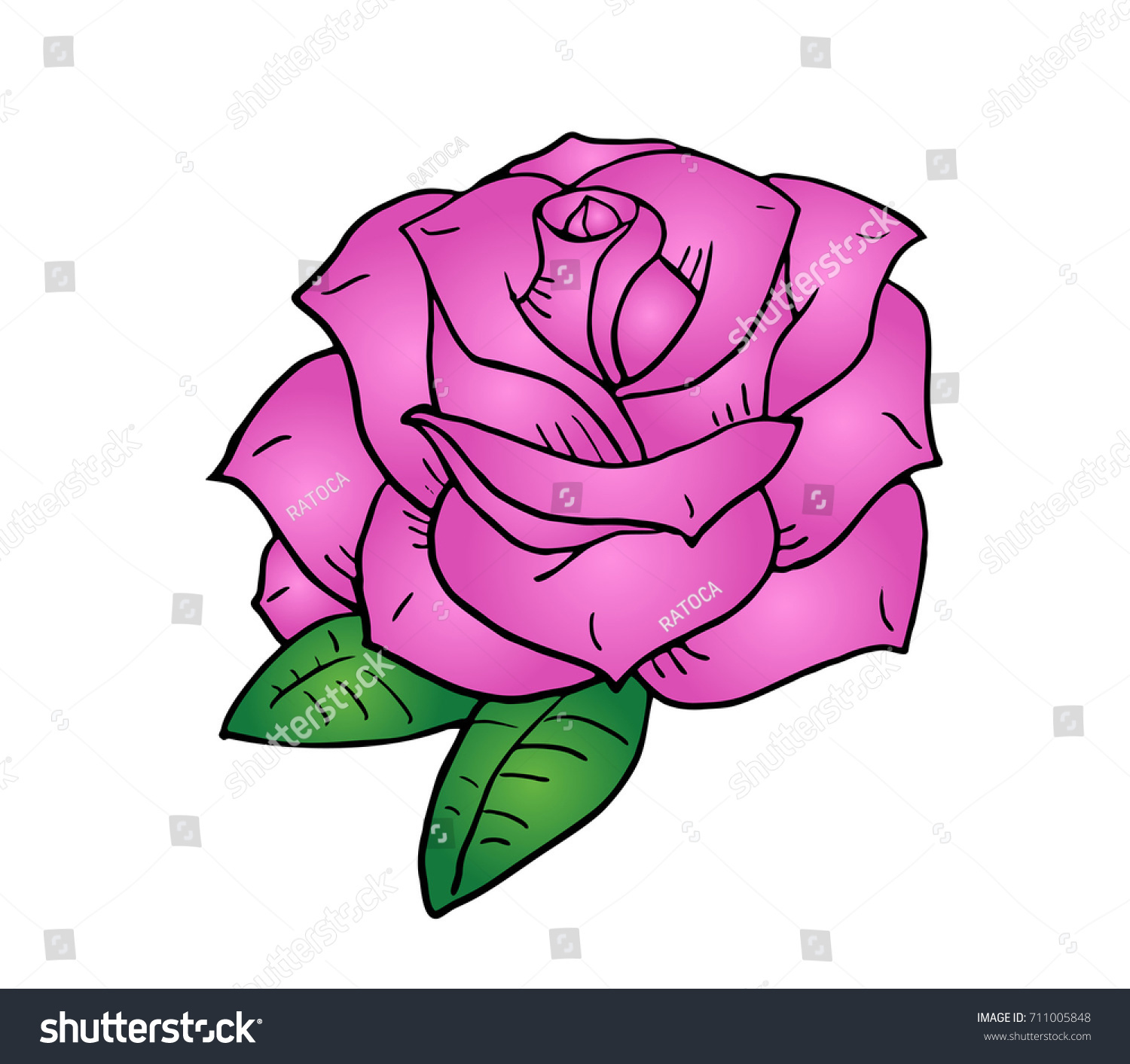Pink Flower Draw Stock Vector Royalty Free 711005848 Shutterstock