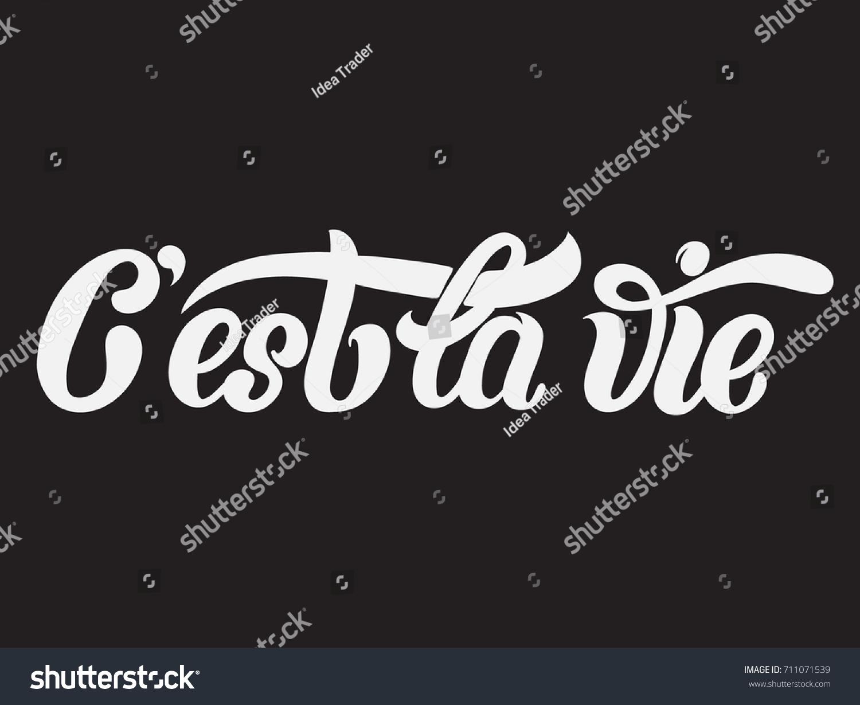 C Stock Quote Cest La Vie Quote Typographical Background Stock Vector 711071539