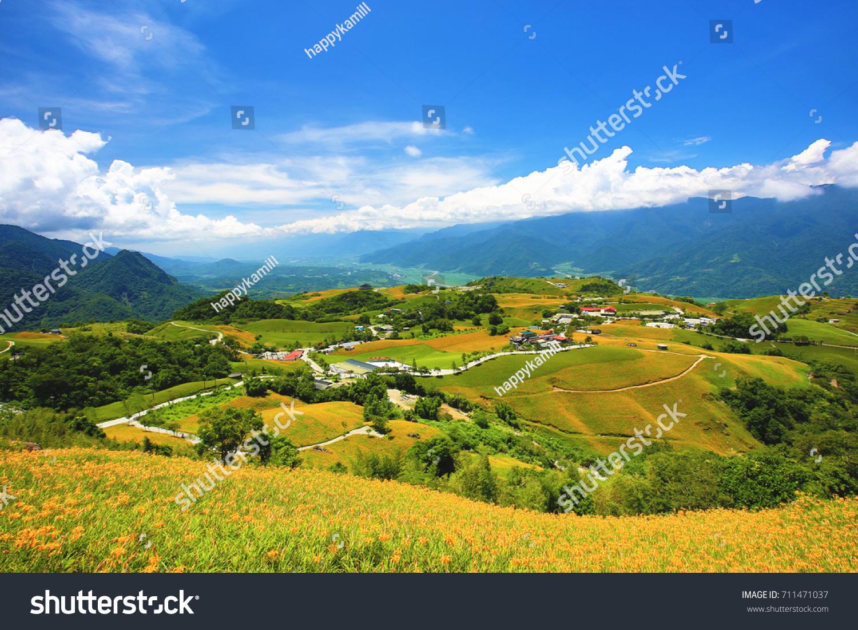 Beautiful scenery daylily flowers village mountains stock photo beautiful scenery of daylily flowers with village and mountains in a sunny day izmirmasajfo