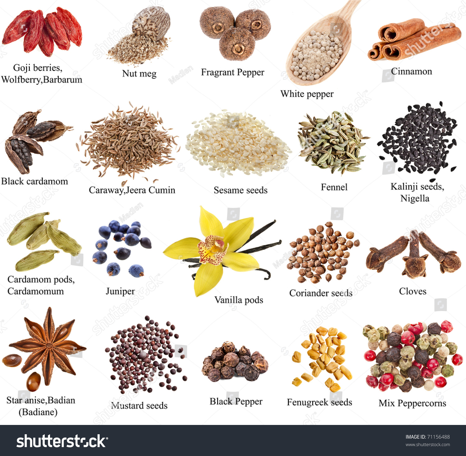 Collection Set Heap Spices Names Close Stock Photo 71156488 ...