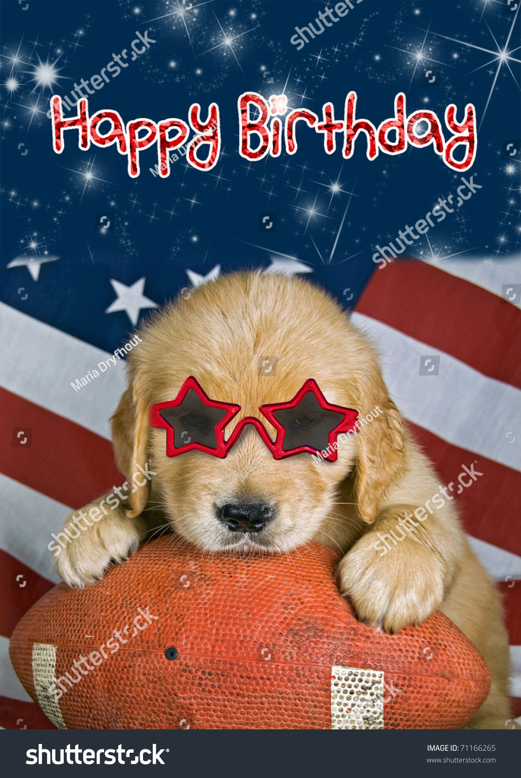 Royalty Free Stock Illustration of Golden Retriever Pup On Football ... 4e83c0fbae76