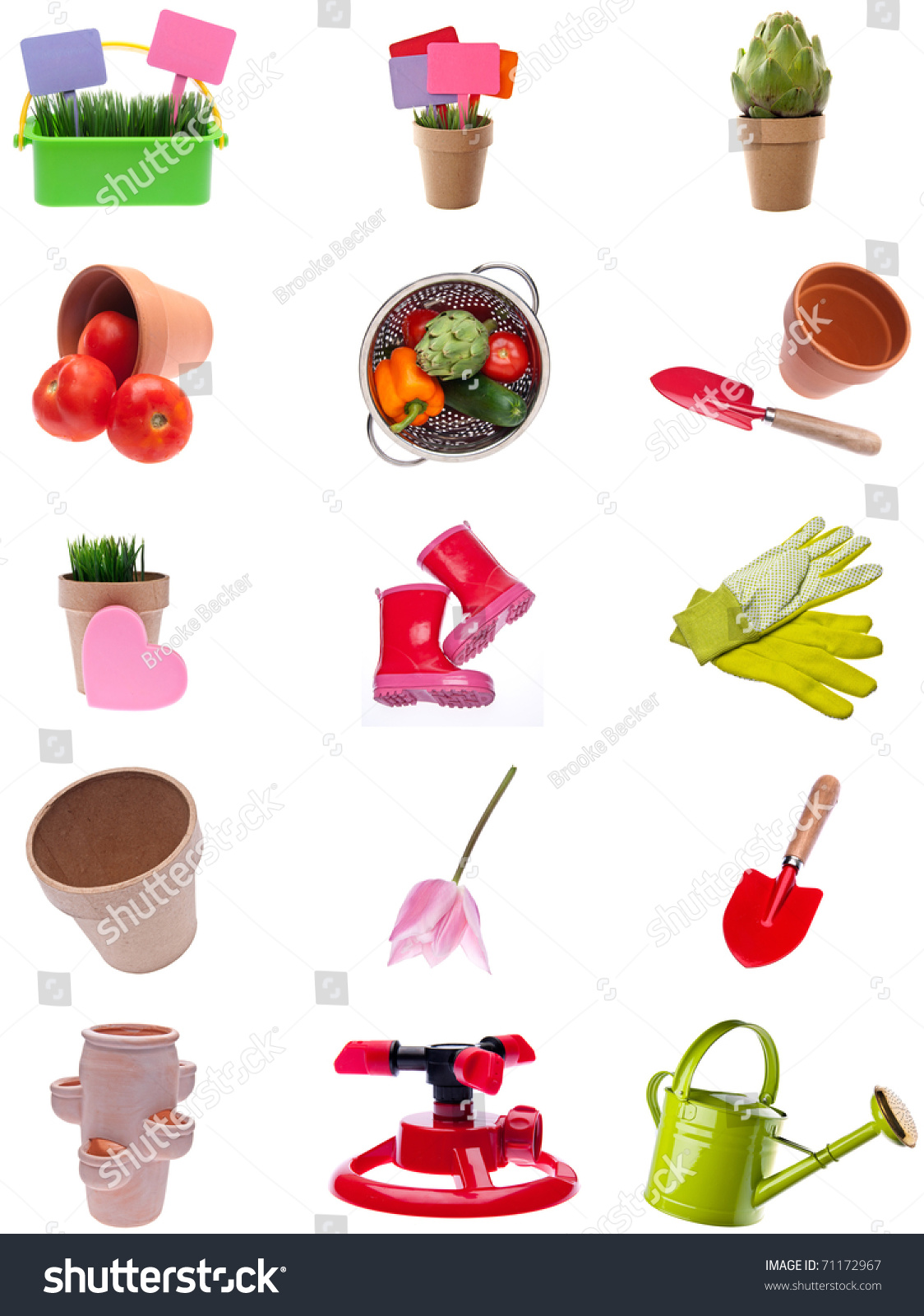Collage Montage Garden Items Isolated On Stock Photo 71172967