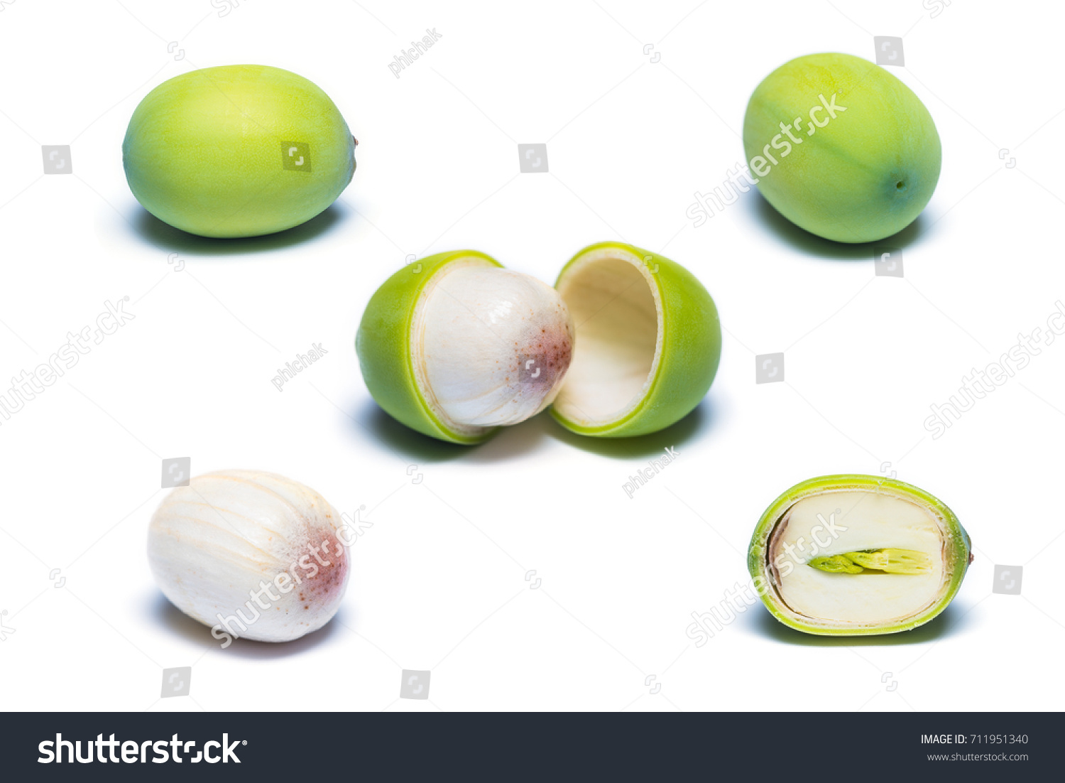 Anatomy Lotus Seed Isolated On White Stock Photo (Royalty Free ...