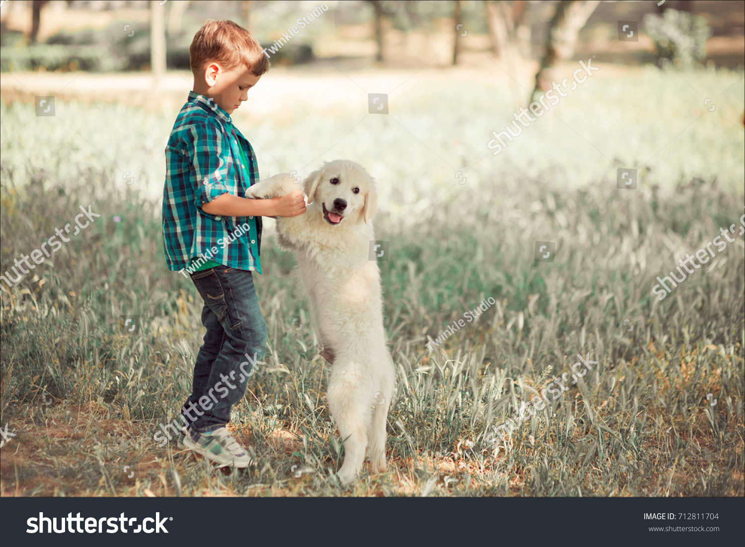 Cute handsome boy teen with blue eyes playing outdoor amazing white pink  labrador retriever puppy enjoying