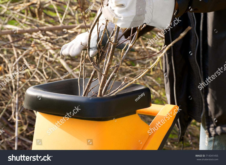 Garden Works Autumn Chopping Pruning Waste Stock Photo (100% Legal ...