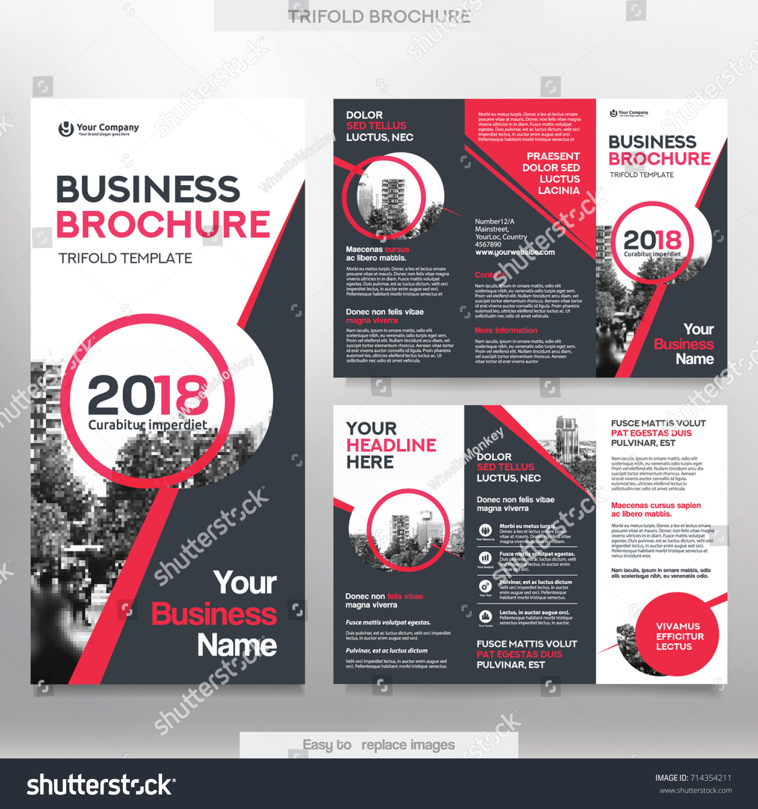 Business Brochure Template Tri Fold Layout Stock Vector - Sales brochure templates