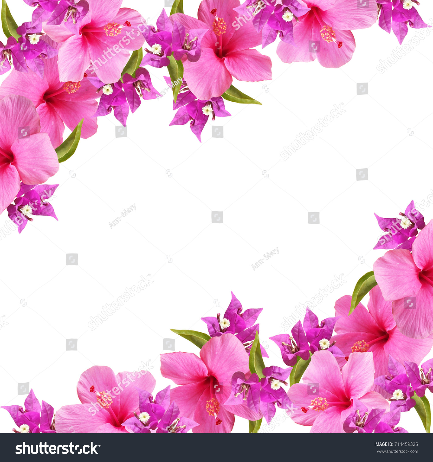 Beautiful Floral Background Pink Purple Flowers Stock Photo Edit