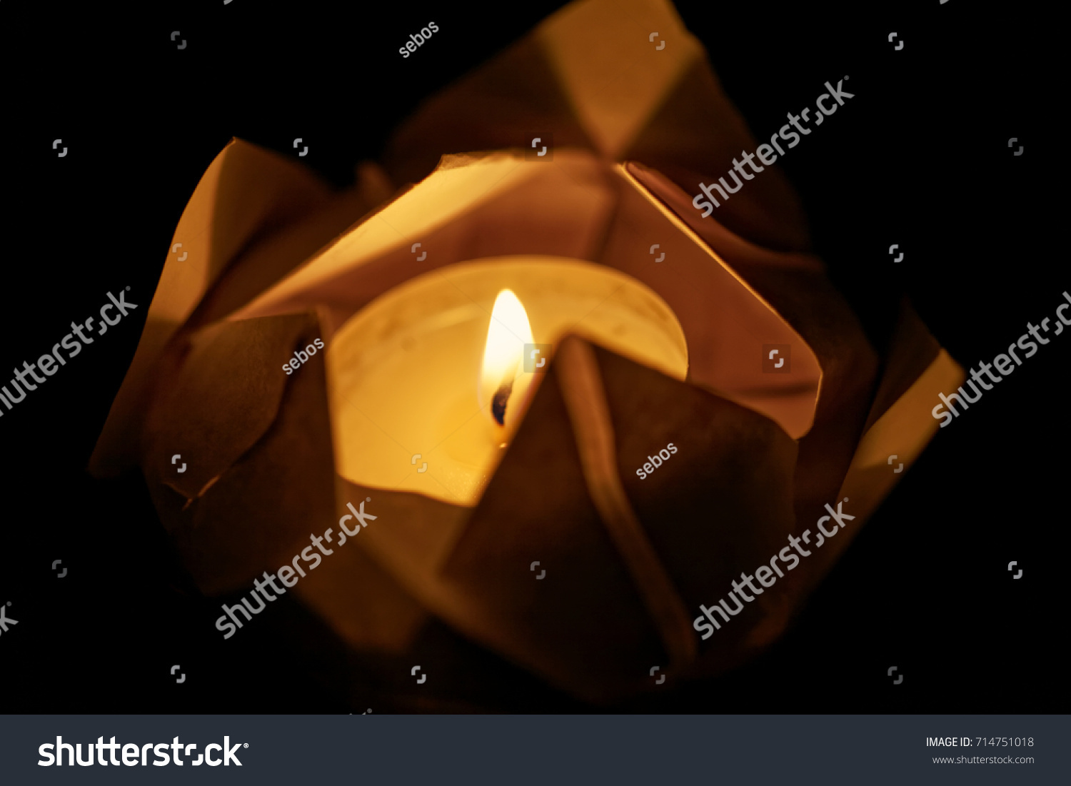 Floating Lotus Flower On Water Festival Stock Photo Edit Now
