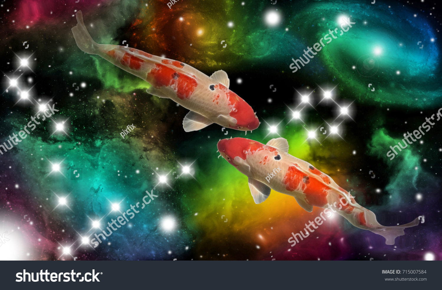 Sign Zodiac Pisces Portrait Two Fish Stock Photo (Safe to Use ...