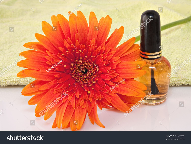 Nail Care Product Bottle Orange Gerbera Stock Photo Royalty Free