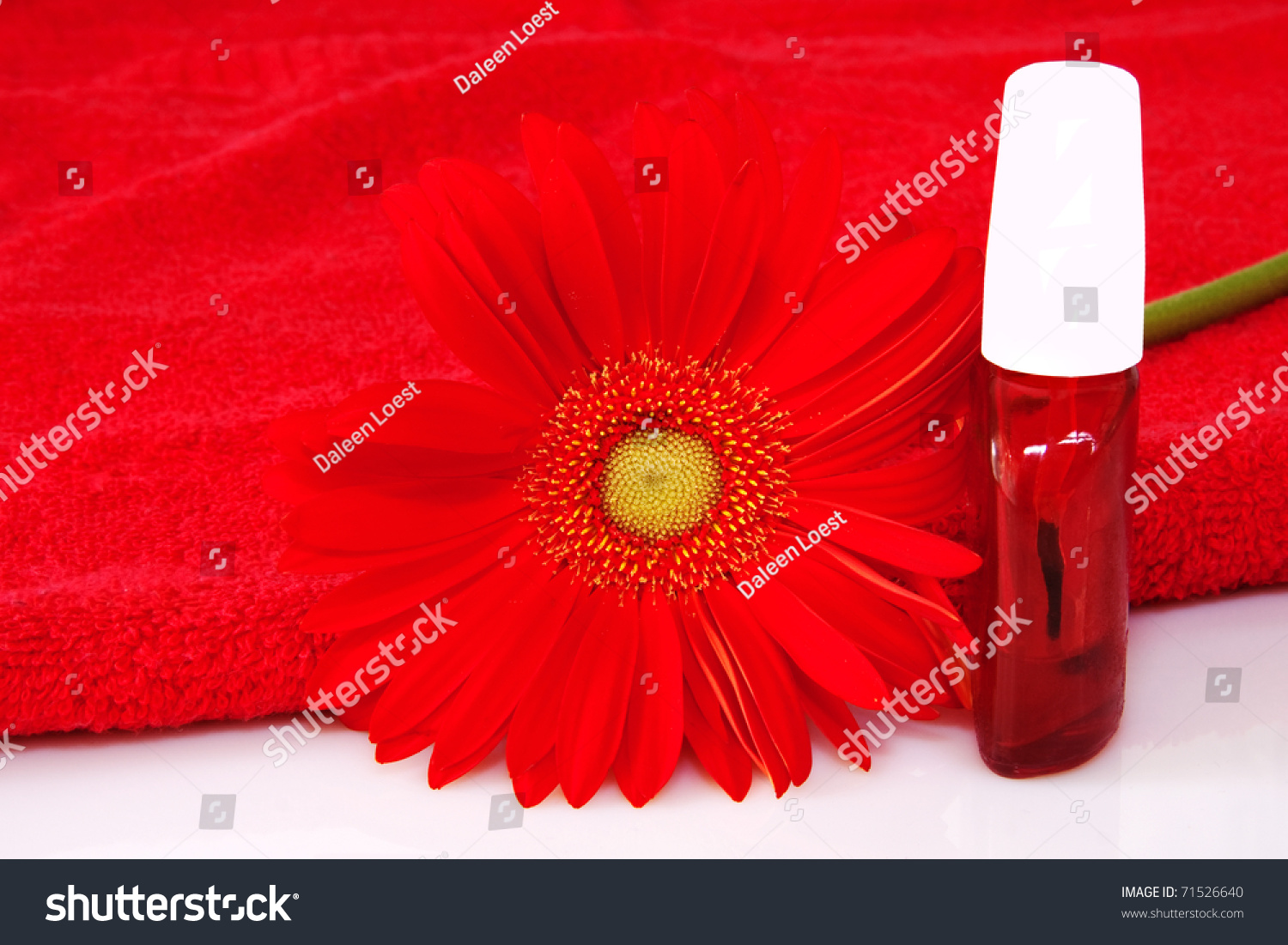 Nail Care Product Bottles Red Gerbera Stock Photo Royalty Free