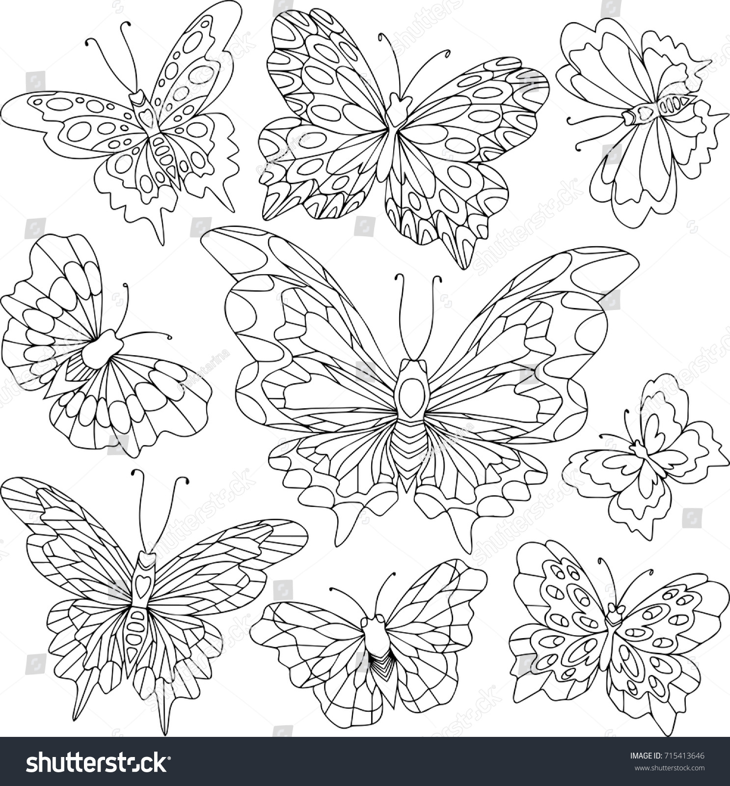 Group Different Butterflies Black White Linear Stock Vector HD