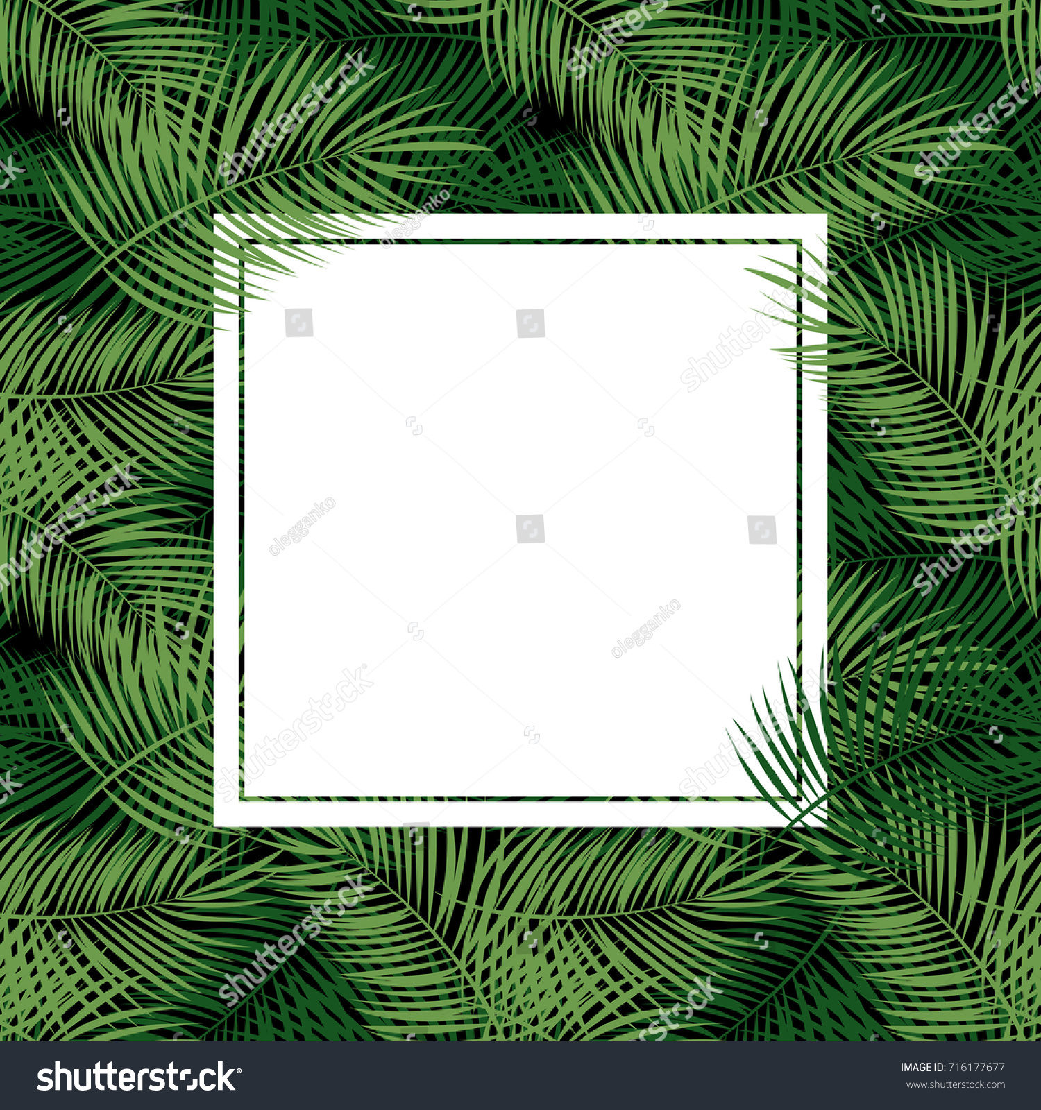 Palm Leaf Vector Background White Frame Stock Vector (Royalty Free ...