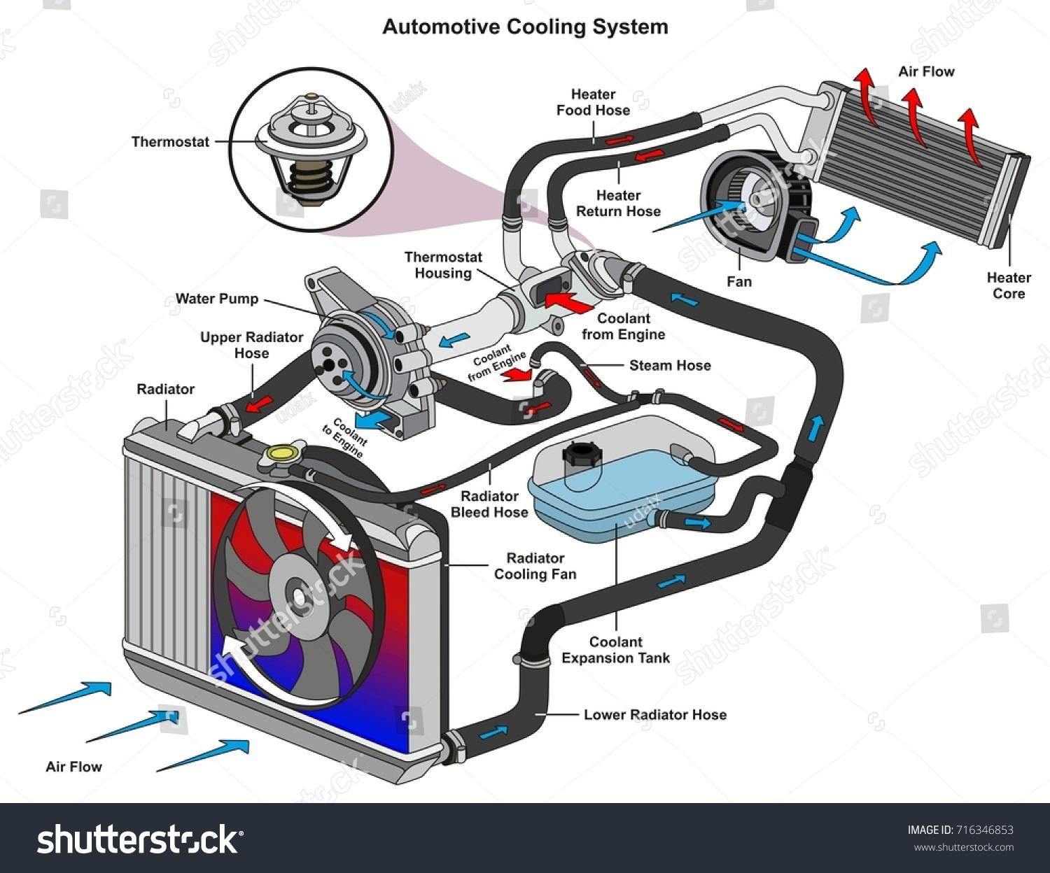 Automotive Cooling System Infographic Diagram Showing Stock Vector Cylinder Thermostat Wiring Process And All Parts Included Radiator Hoses Coolant Flow