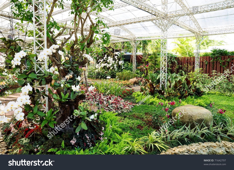 Indoor Garden Stock Photo 71642797 Shutterstock