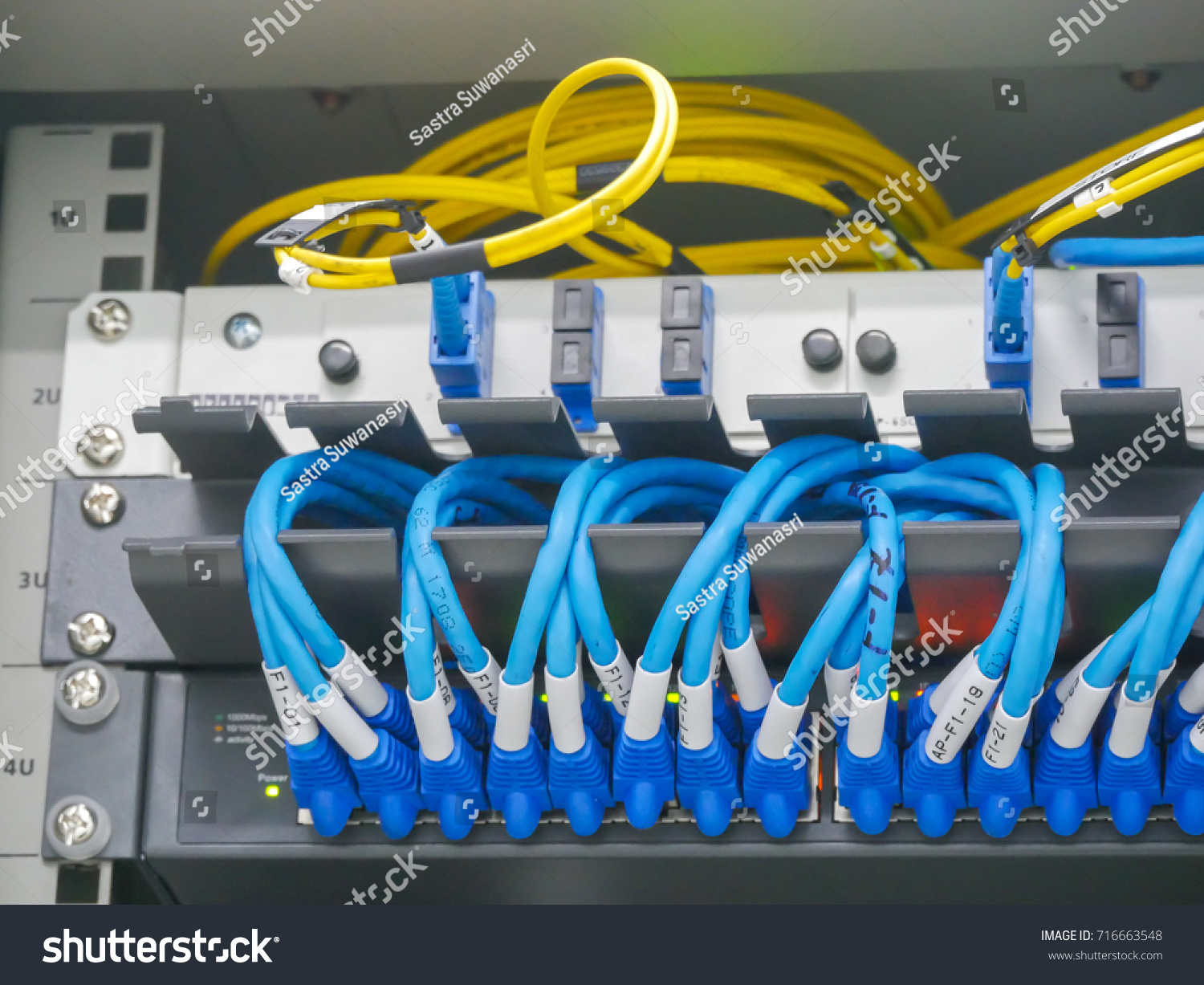 Selective Focus Cat 6 Patch Cord Fiber Stock Photo Edit Now Panel Wiring Cat6 And Cable In Server Rack