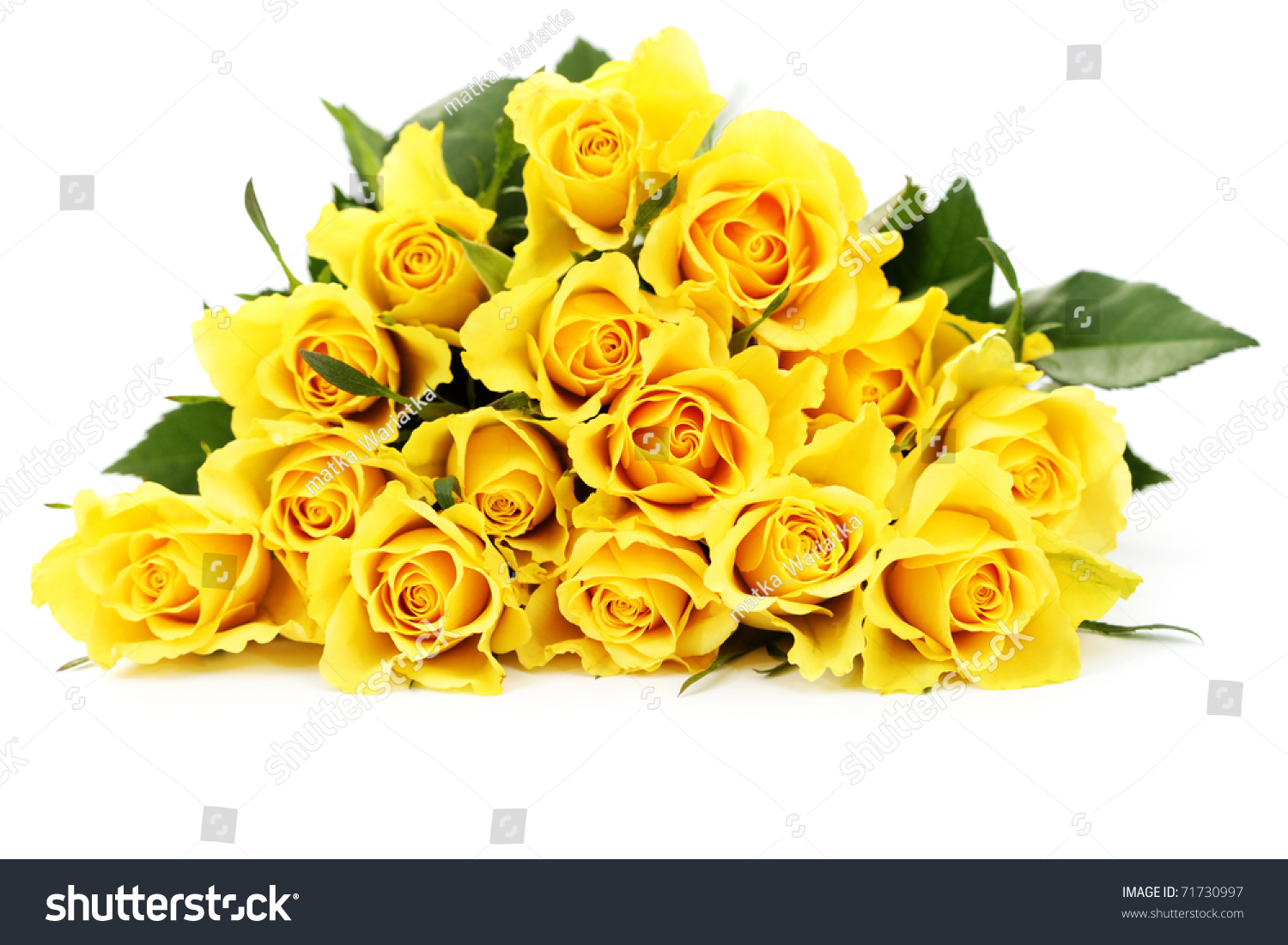 Bunch Lovely Yellow Roses Flowers Plants Stock Photo Edit Now