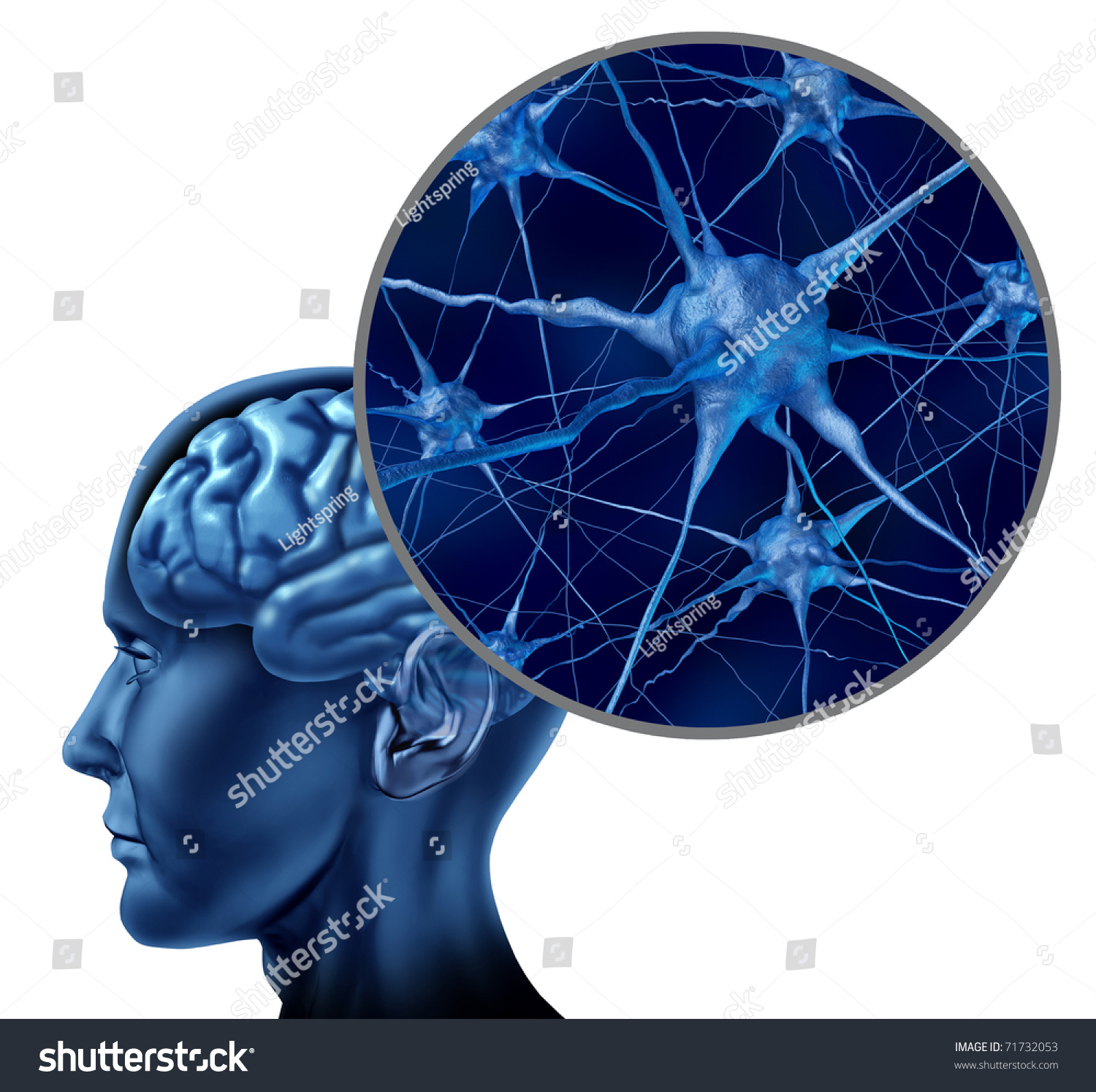 Homeopathy medicine for brain power picture 4