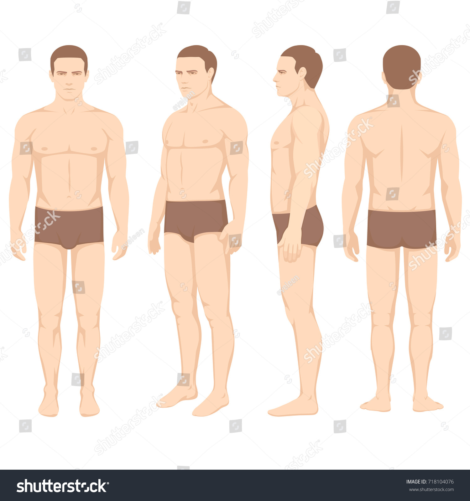 human body anatomy vector man silhouette stock vector royalty free 718104076 https www shutterstock com image vector human body anatomy vector man silhouette 718104076