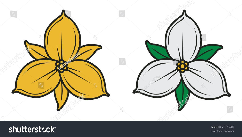 Gold Natural Trillium Flower Ontario Canada Stock Vector Royalty