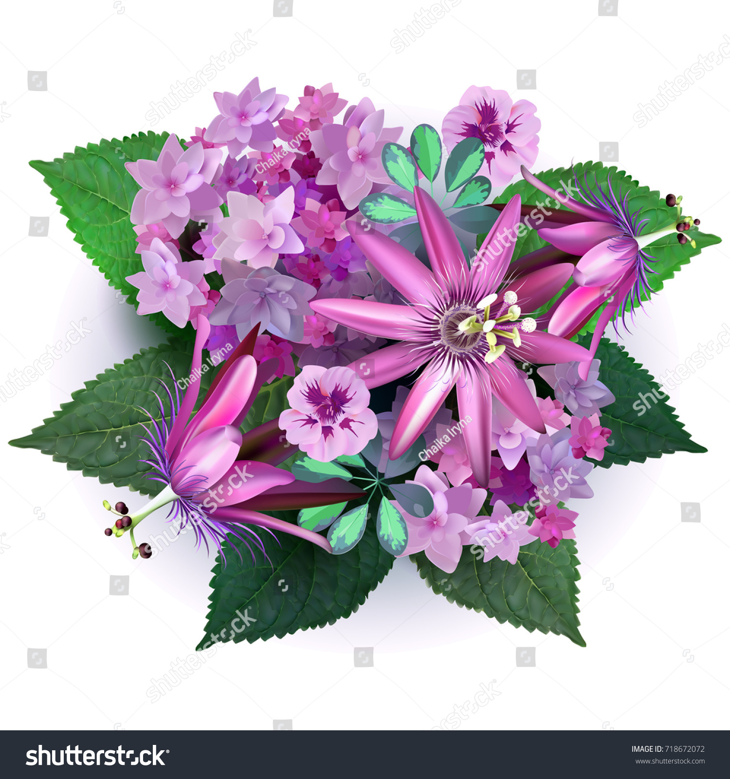 Exotic Tropical Flowers Hydrangea Passionflower Composition Stock
