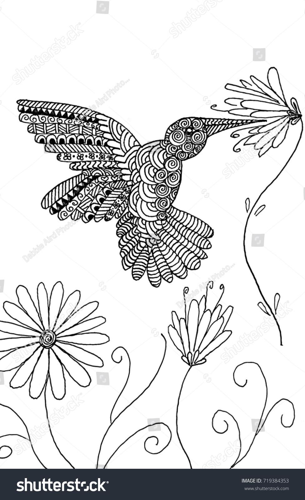 Beautiful Humming Bird Hand Drawn Zentangle Stock Illustration ...