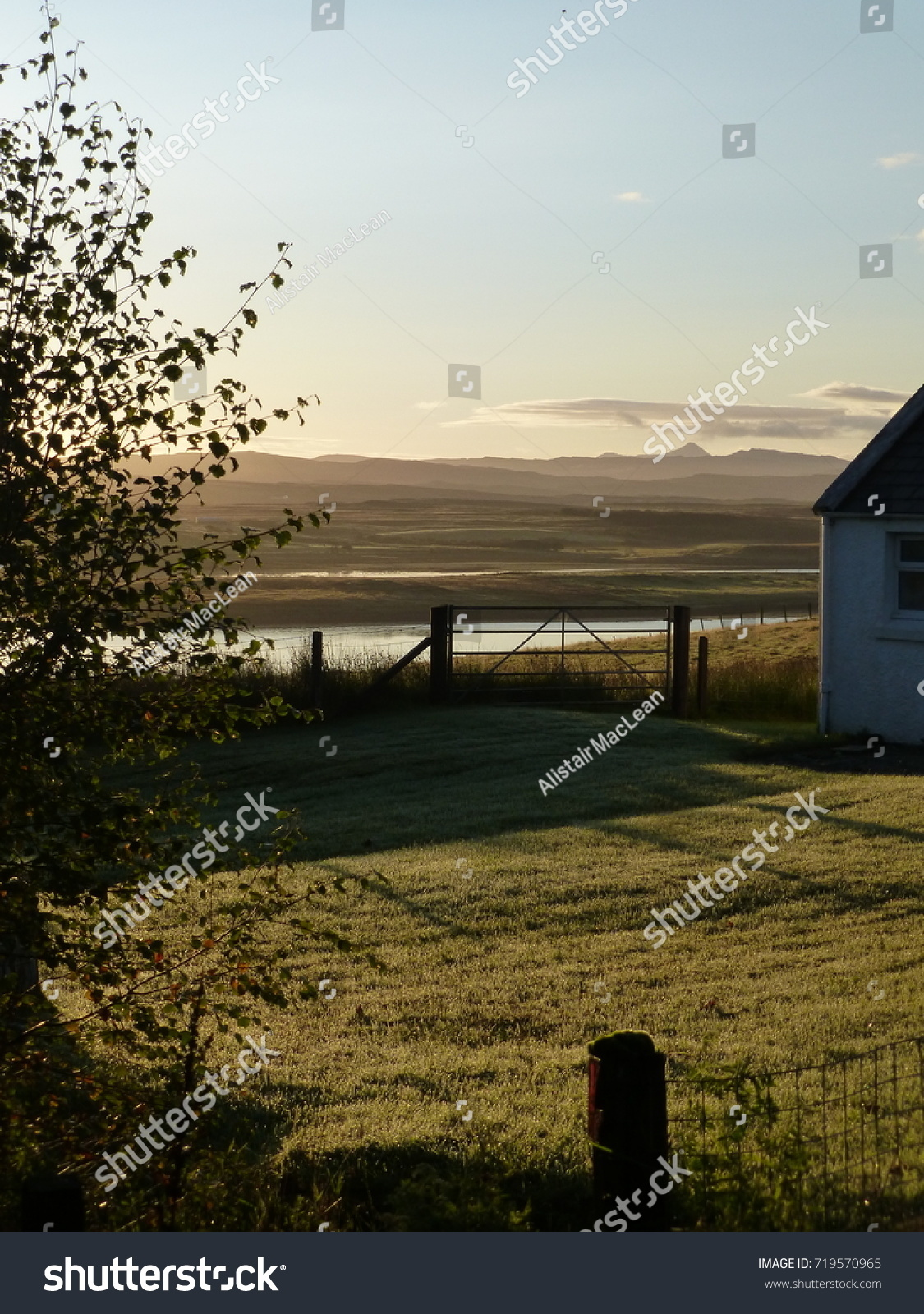 Dewcovered Garden Bathed Early Morning Autumn Stock Photo (Royalty ...