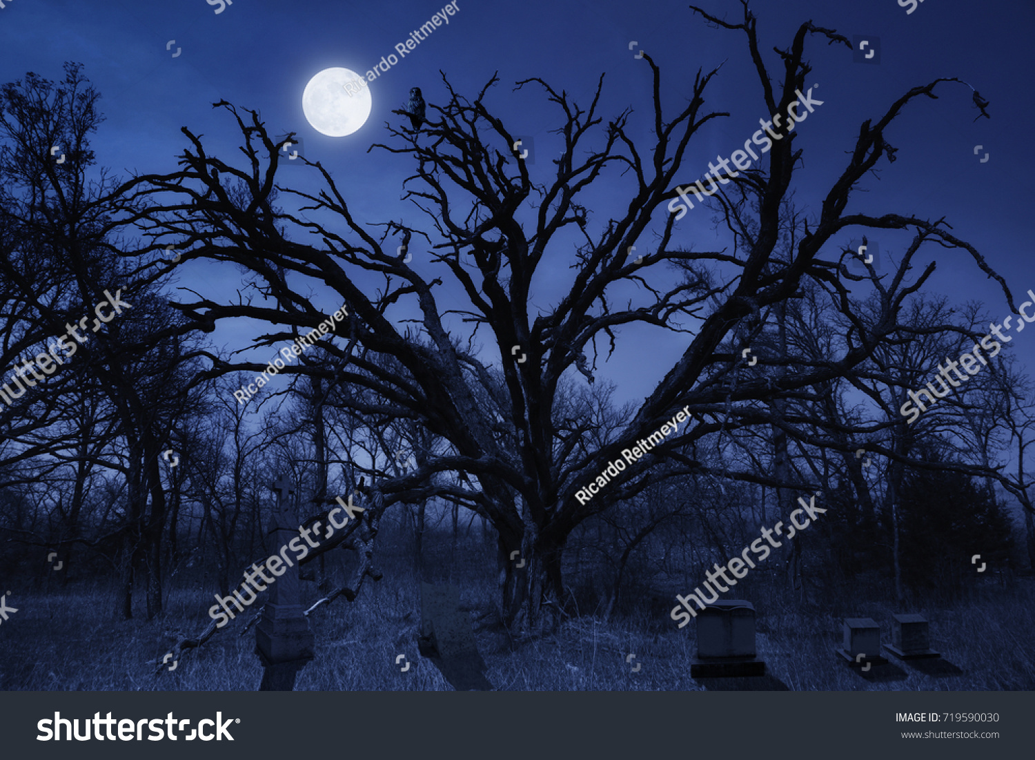 this spooky night time halloween cemetery stock photo (royalty free