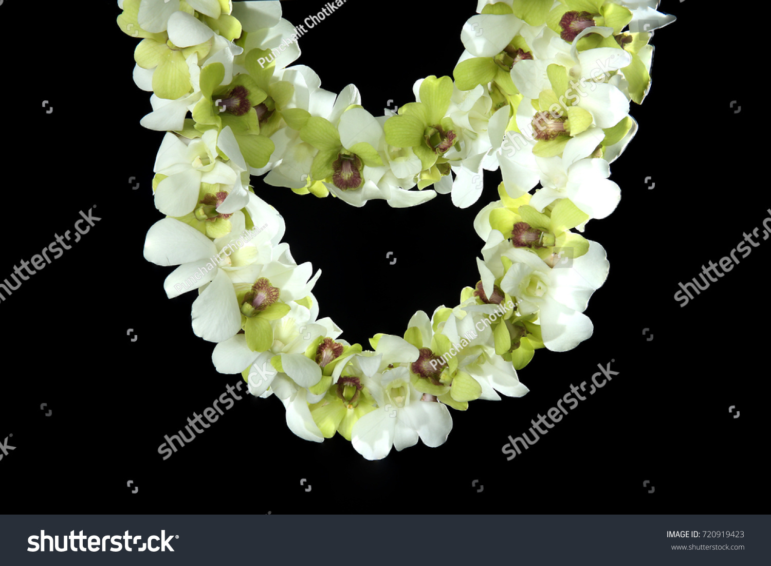 Hawaii flowers lei necklace made orchid stock photo 720919423 hawaii flowers lei necklace made from orchid flower on black background izmirmasajfo