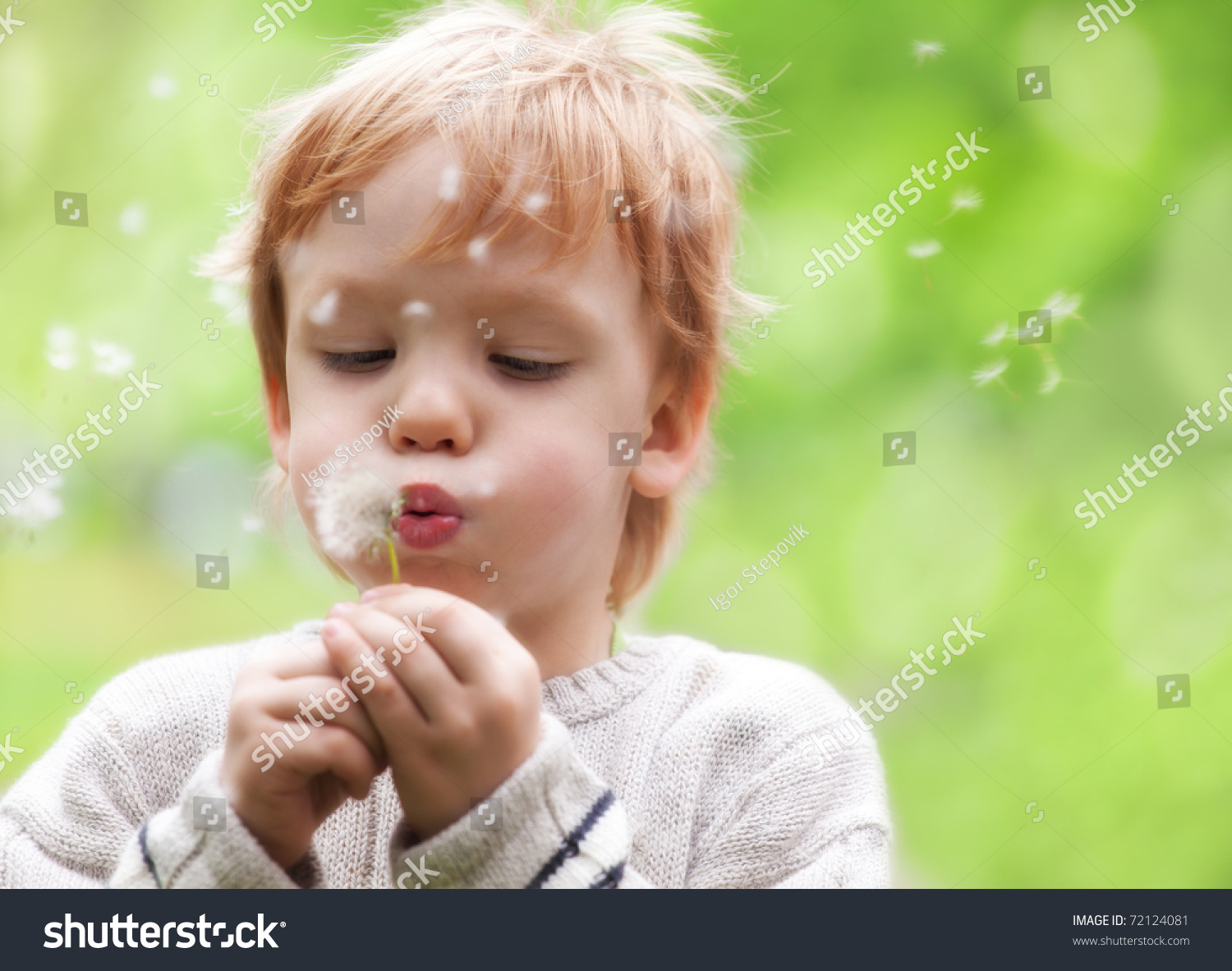 https://image.shutterstock.com/z/stock-photo-young-blond-kid-in-the-meadow-blowing-wishes-on-dandelion-seed-72124081.jpg