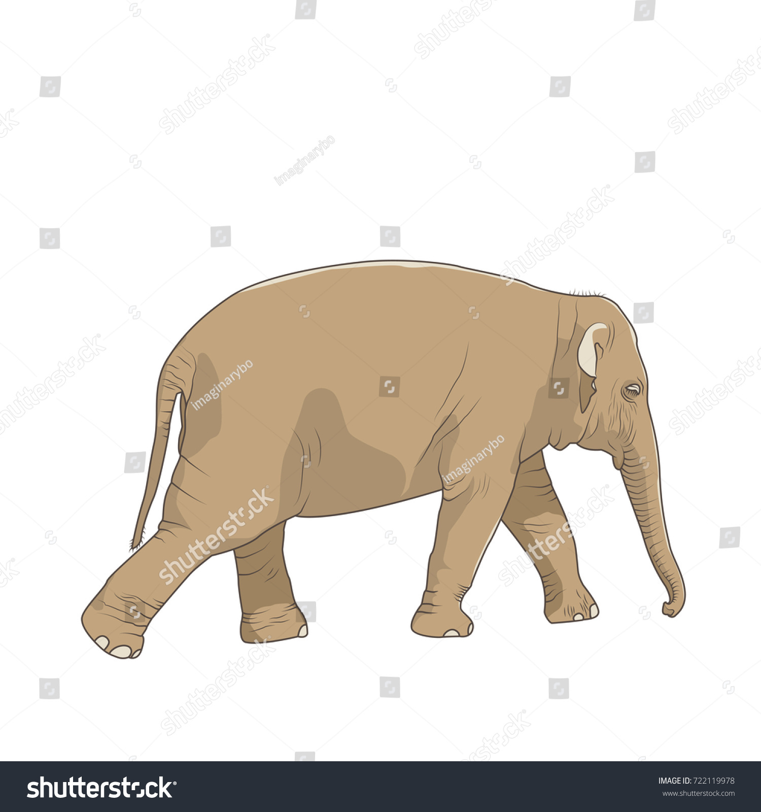 Isolated brown elephant character figure on stock vector 722119978 isolated brown elephant character figure on white background big mammal animal standing striding walking moving sciox Images
