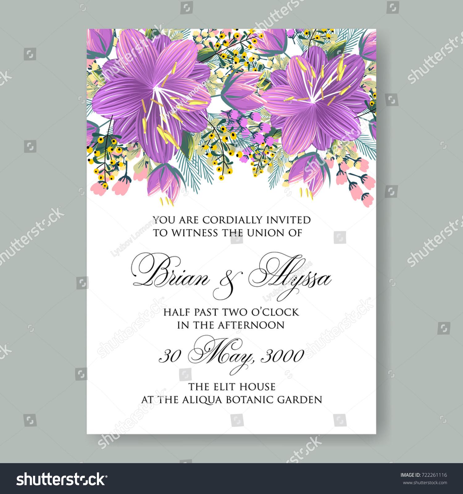 Velver Lilac Tropical Flower Hibiscus Luau Stock Vector 722261116 ...