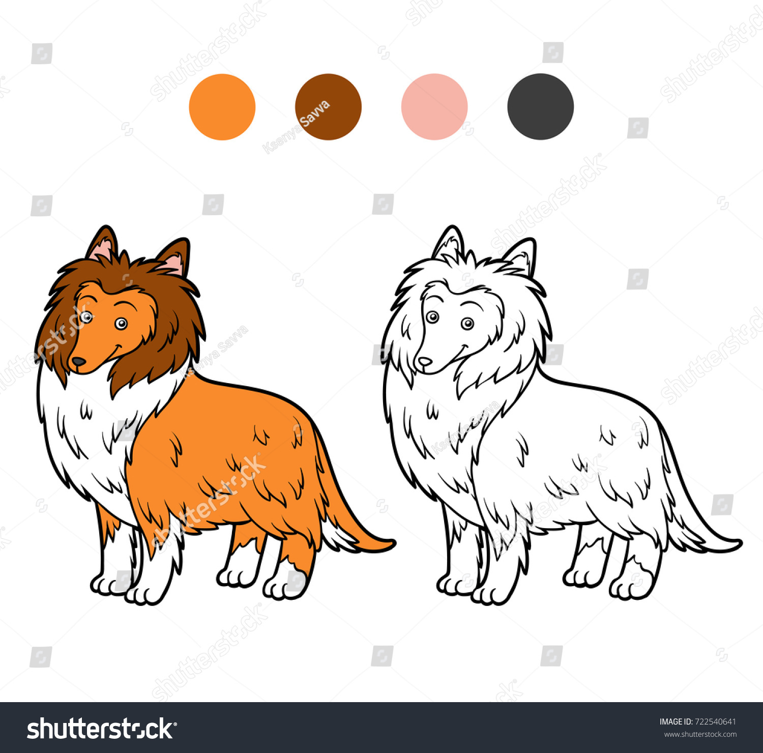 Coloring Book For Children Dog Breeds Collie